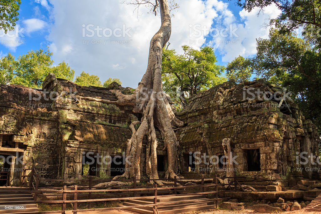 Ta Prohm temple, ancient architecture in Cambodia stock photo