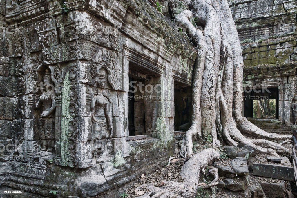 Ta Prohm Temple Angkor Wat Siem Reap Cambodia stock photo