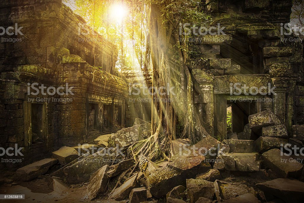 Ta Prohm temple, Cambodia, Angkor stock photo