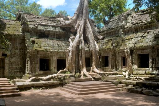 istock Ta Prohm Temple, Cambodia 118315476