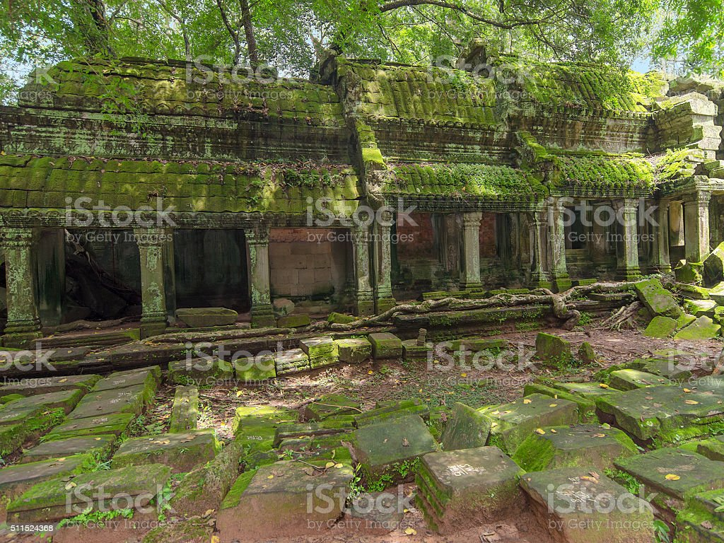 Ta Prohm Temple in Angkor, Siem Reap, Cambodia stock photo