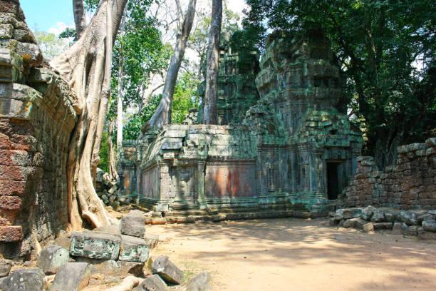 Ta Prohm temple in Siem Reap stock photo