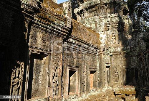 Ta Prohm Temple Ruin in Angkor Siem Reap, Cambodia