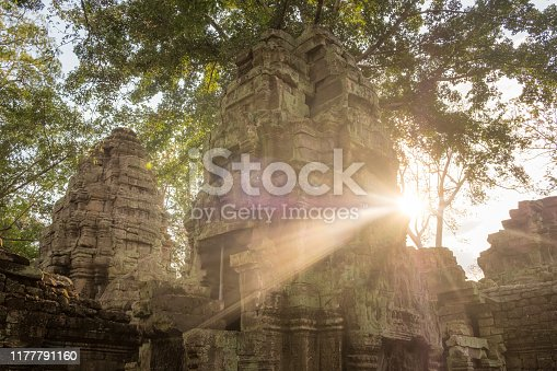 Ta Prohm temple it is known for the huge trees and massive roots growing out of its walls in Siem Reap, Cambodia.