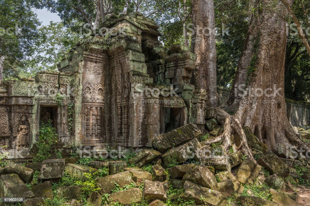 Ta Prohm temple with silk cotton tree roots in Angkor, Siem Reap, Cambodia. foto de stock royalty-free