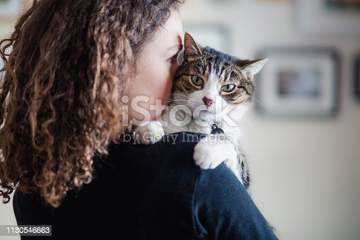 domestic cat, one young woman only, animal themes, holding,