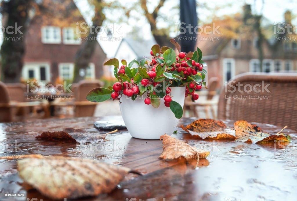 Mesa Decorada Con Frutos Rojos En La Terraza De Un