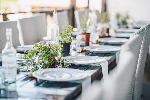 Table decoration for a special occasion - white plates and green plants. Eco/nature friendly decoration.