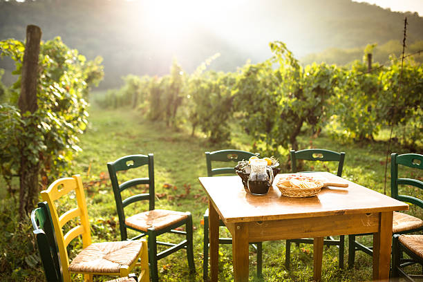 table in the vineyard with food stock photo