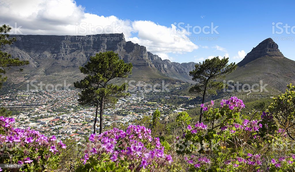 Table Mountain, Cape Town royalty-free stock photo