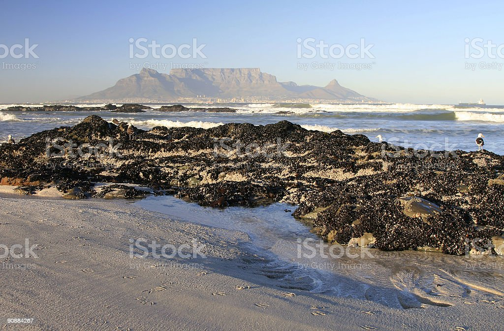 Table Mountain in Cape Town, South Africa royalty-free stock photo
