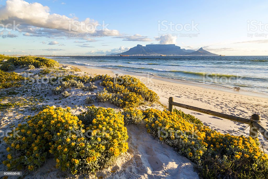 Table Mountain, South Africa stock photo