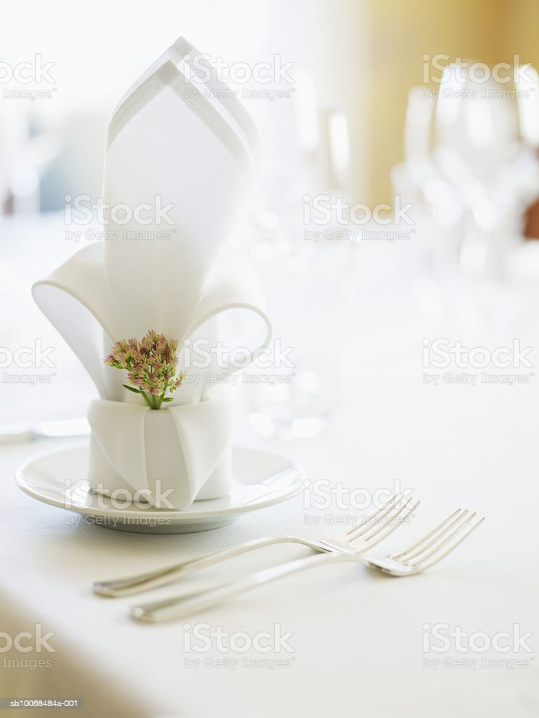 Table set with napkin and cutlery, close-up foto de stock libre de derechos