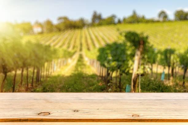 tabell top mallen mot vinstockar hill - vineyard bildbanksfoton och bilder