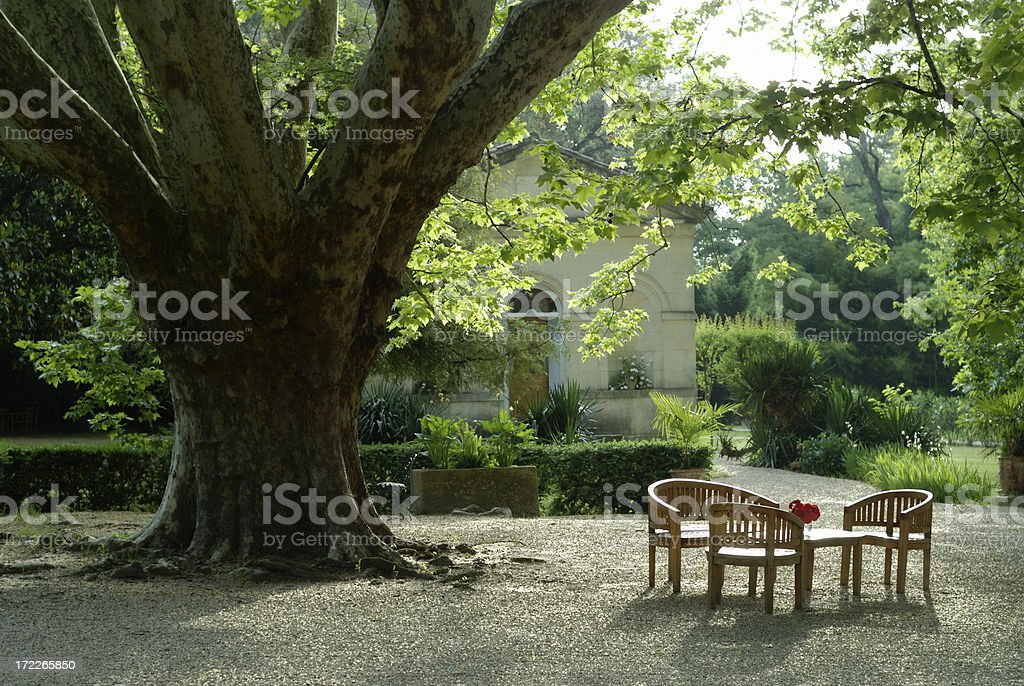 Table Under a Tree royalty-free stock photo