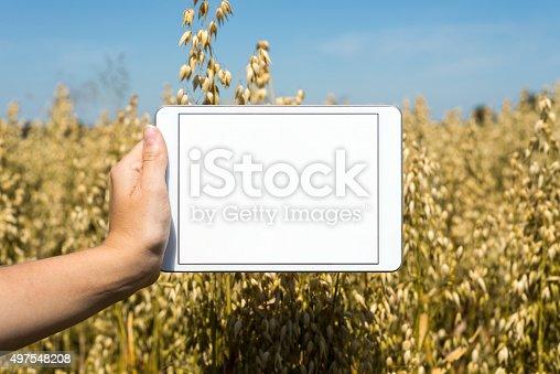 istock Tablet held by hand in oat field 497548208