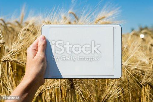 istock Tablet held by hand in oat field 497548418