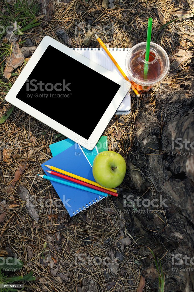 Tablet under the big tree in city park foto stock royalty-free