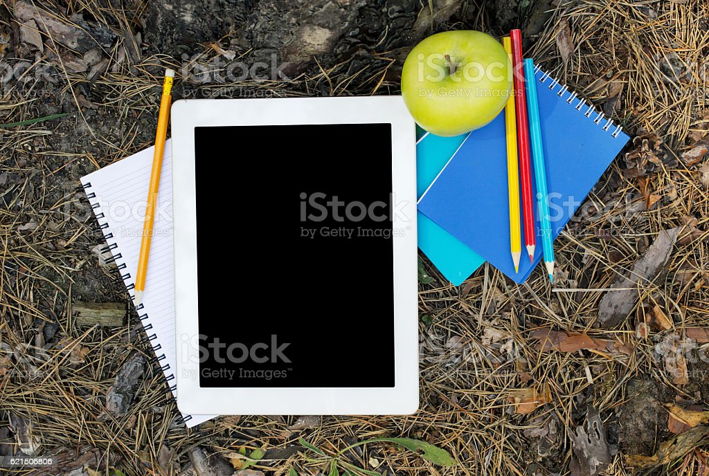 Tablet with a blank screen under the big tree photo libre de droits