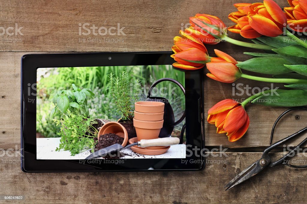 Tablet with Garden Scene stock photo