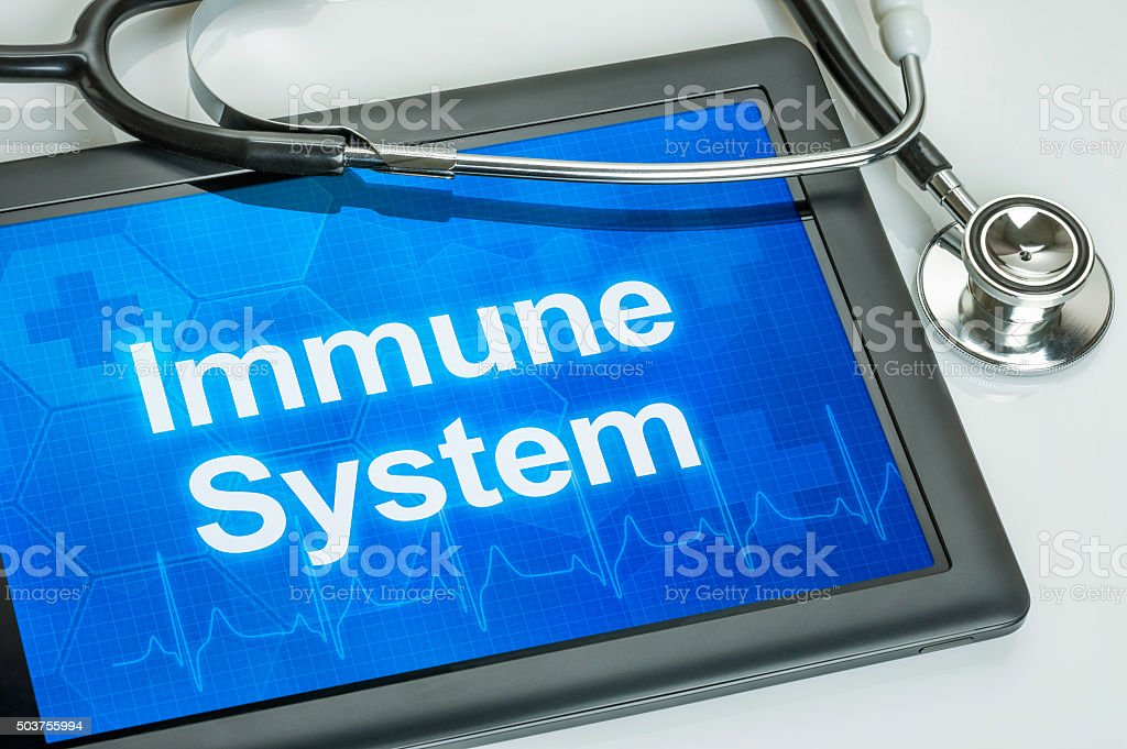 Tablet with the text Immune system on the display stock photo