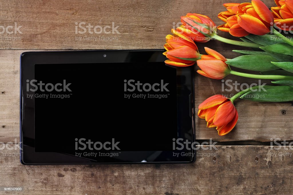 Tablet with Tulips stock photo