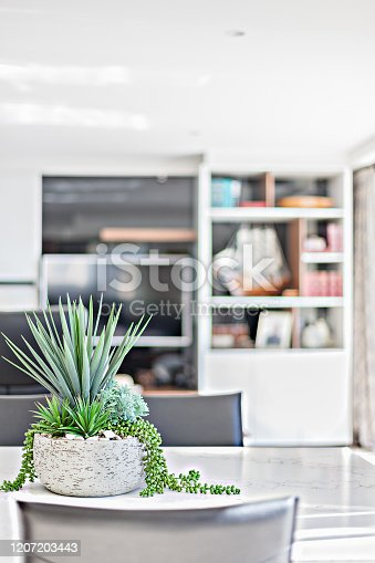 A tabletop planter with living area cabinets on the background