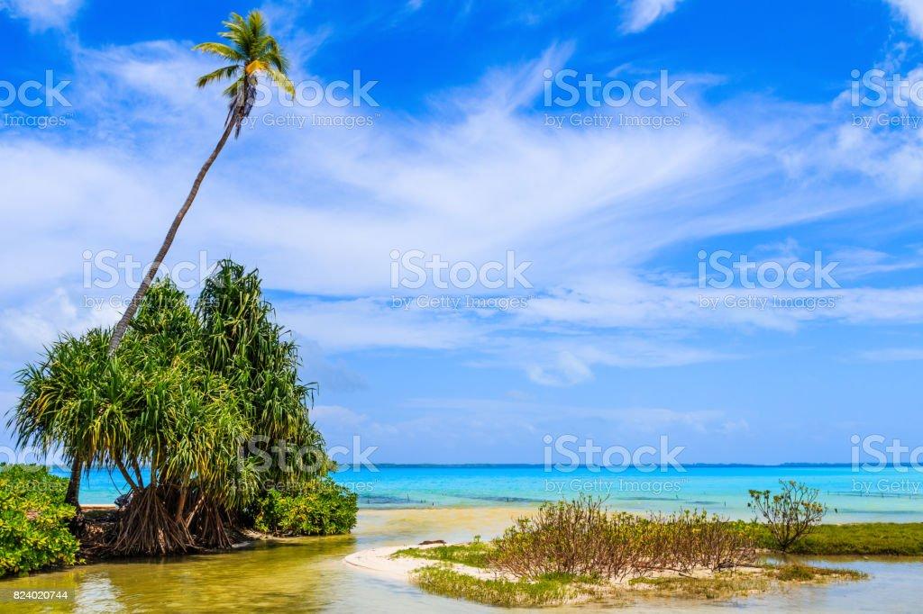 Tabuaeran, Fanning Island, Republic of Kiribati. stock photo