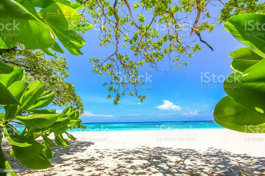 Tachai Island beach in Phang nga, Thailand stock photo
