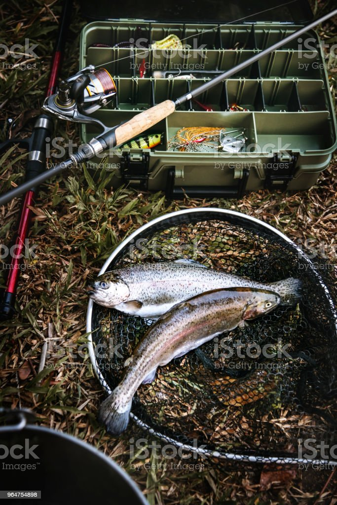 Tackle box and fish on the ground royalty-free stock photo