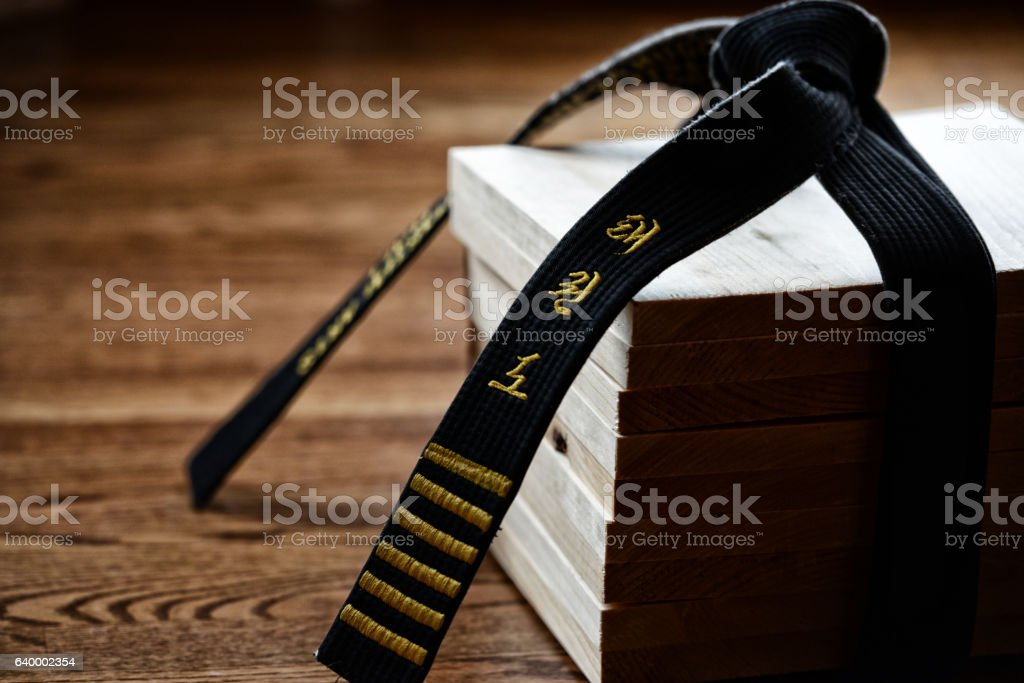 Tae Kwon Do Space stock photo