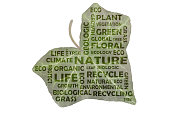 Tag cloud to the main keywords nature, recycling and green life.