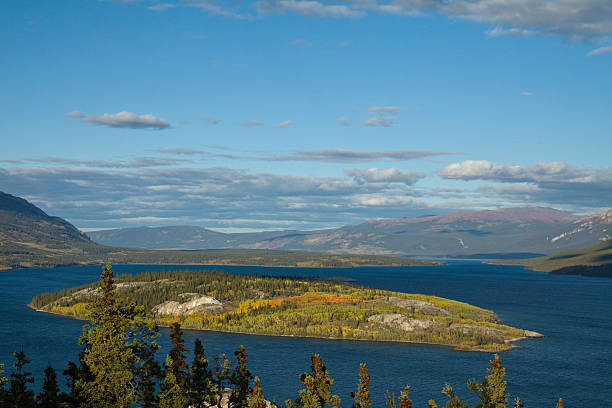 tagish lake, yukon southern lakes, canada - yt stock pictures, royalty-free photos & images