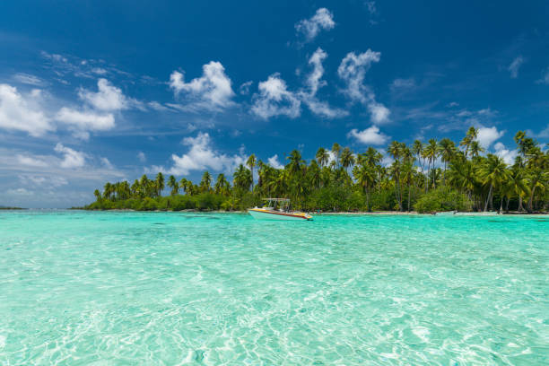 Best Tahaa Island Stock Photos, Pictures & Royalty-Free