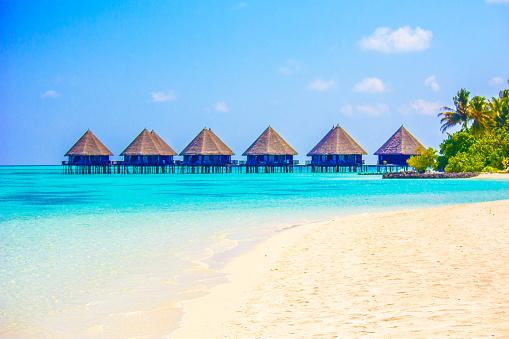 istock Tahiti, French Polynesia - Eden on Earth 503046772