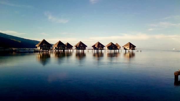 Tahitian Dawn stock photo