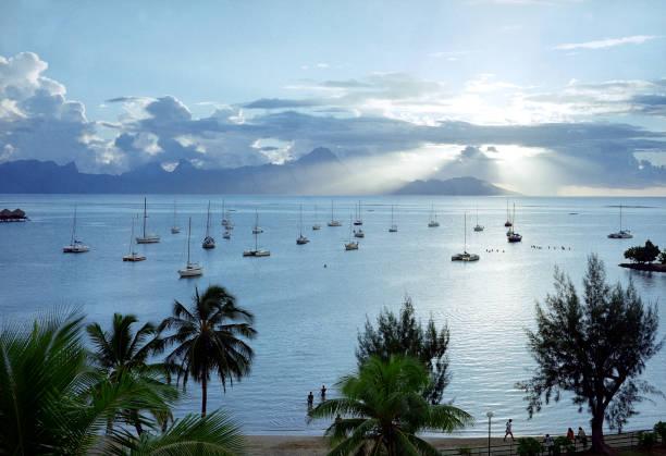 Tahitian Harbor stock photo