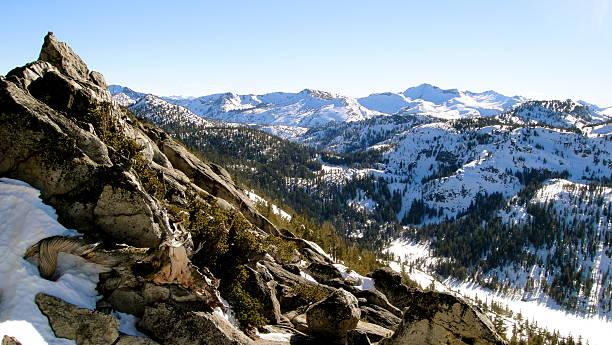 tahoe backcountry - lake tahoe winter stock-fotos und bilder