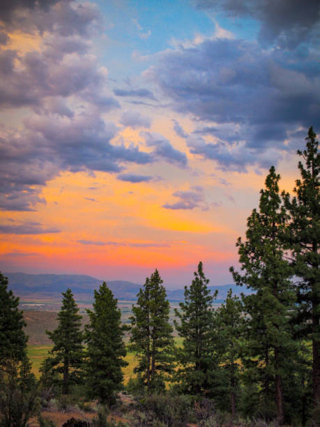 Tahoe Sunset A Vibrant Sunset off the beautiful Carson Valley just south of Lake Tahoe. national forest stock pictures, royalty-free photos & images