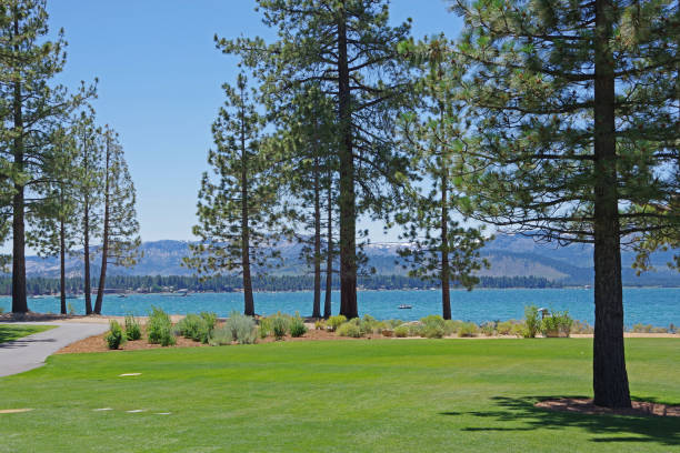 Tahoe view stock photo