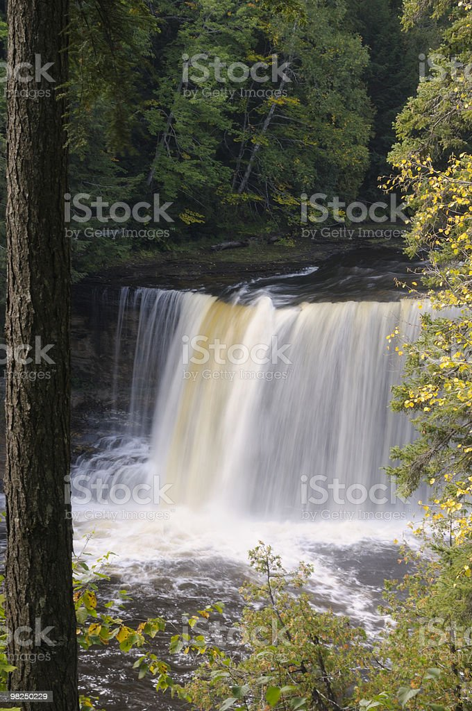 Tahquamenon Falls, Michigan royalty-free stock photo