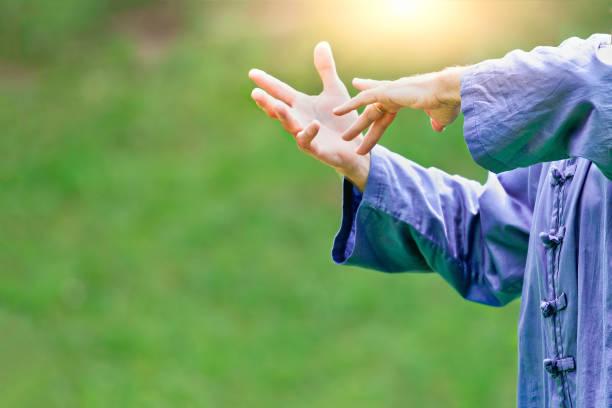 Tai Chi Chuan. Chinesische Kampfkunst – Foto