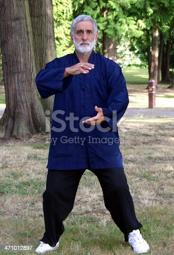 Tai chi master demonstrates a move called
