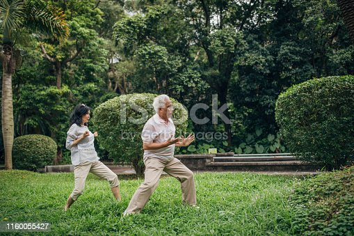 Senior/mature people exercising outdoors in the park together
