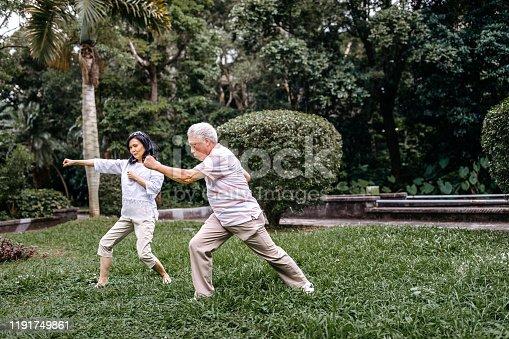 646614234 istock photo Tai chi in park 1191749861