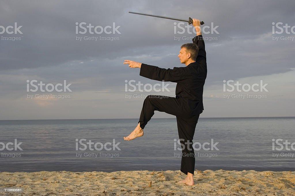 tai chi - posture great star royalty-free stock photo