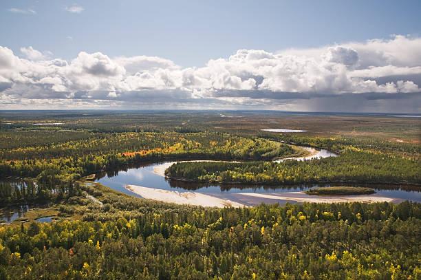 Taiga. Western Siberia Autumn, taiga, Western Siberia. taiga stock pictures, royalty-free photos & images
