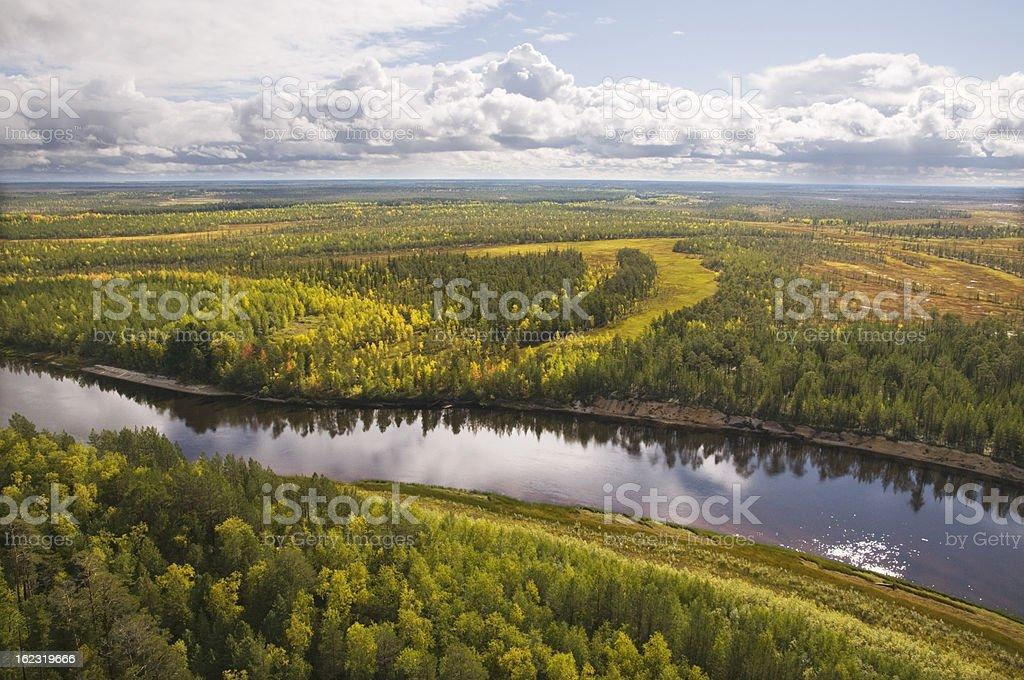 Taiga. Western Siberia. royalty-free stock photo