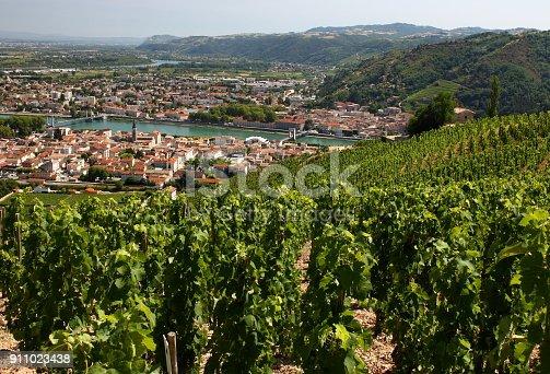 Tain L'Hermitage, Paysage, vignoble et vigne de la Vallée du Rhône France 2017