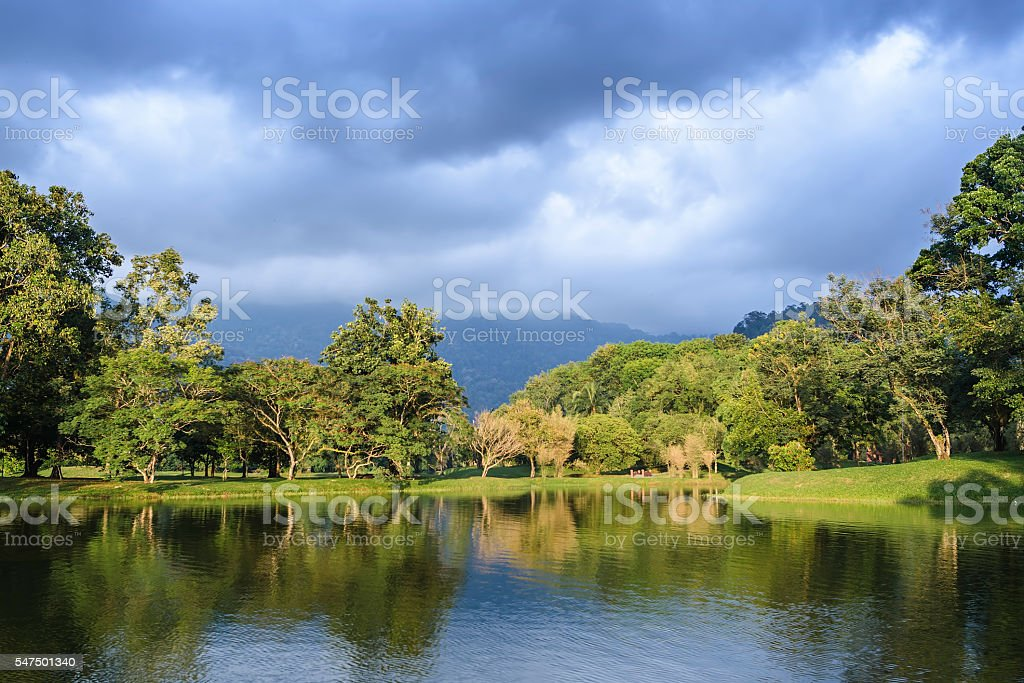 Taiping lake garden at sunset, Taiping, Malaysia stock photo